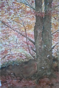 Bosque otoñal 19x27,5 cm 1998